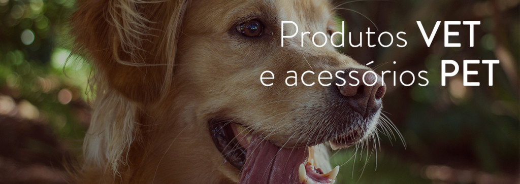 image-dog_