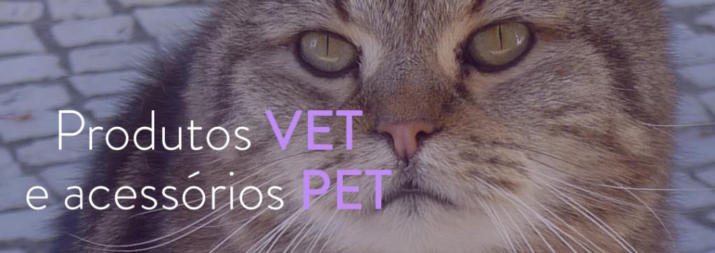 image-cat_